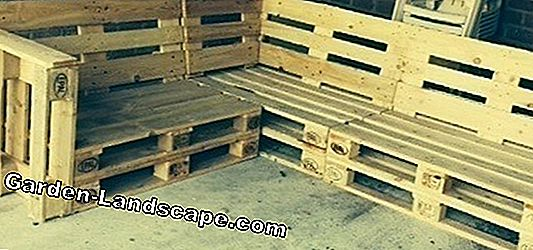 Bank of europallets membangun diri Anda sendiri - video tutorial