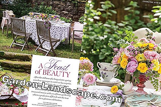 MY BEAUTIFUL GARDEN: February 2017 issue