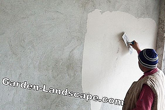 Process clay plaster thoroughly