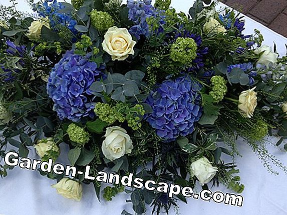 Funeral wreath - funeral wreaths say goodbye stylishly