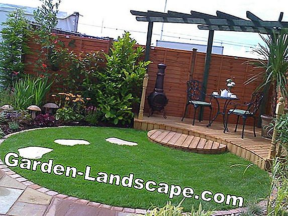 Create and design a sunken garden