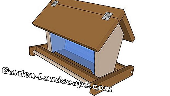 Just build a bird house yourself