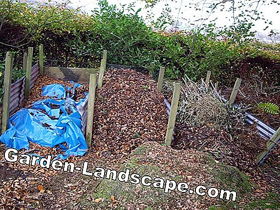 Build compost heaps and create