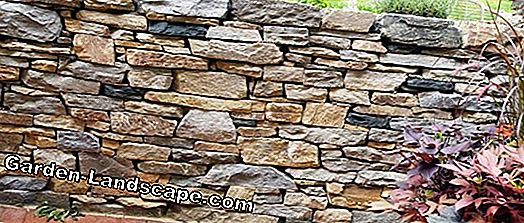 Garden design with dry stone walls