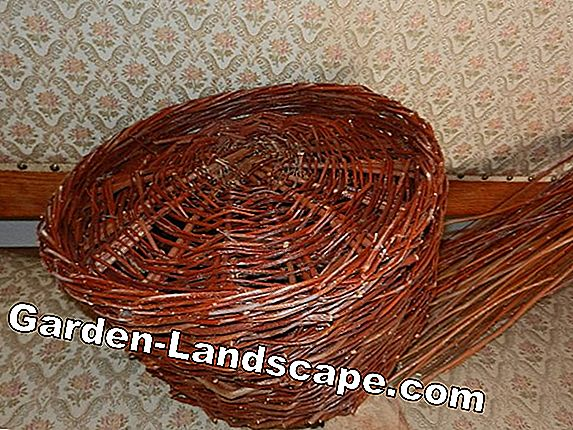 Basket weaving - Material and instructions - Weaving baskets
