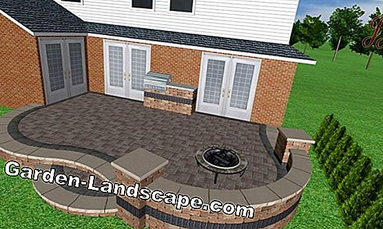Design ideas for a front yard
