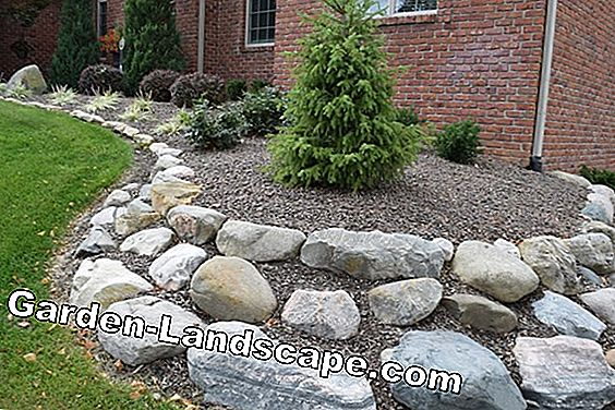 Easy-care grave design with stones and plants