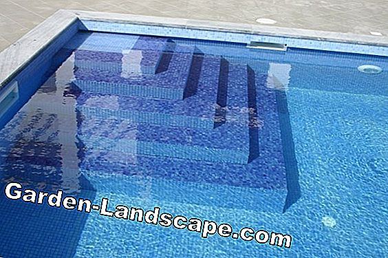 Effective cleaning of your own garden pool - how it works!