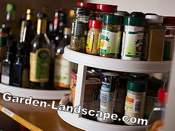 Herbs and spices in the apartment / kitchen pull
