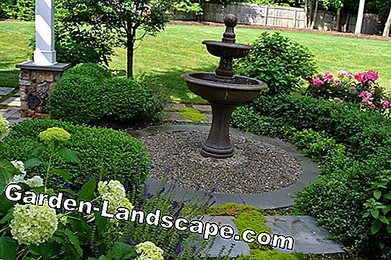 Create rock garden - planning the design