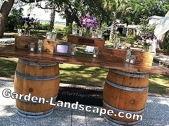 Used old wine barrels as decoration