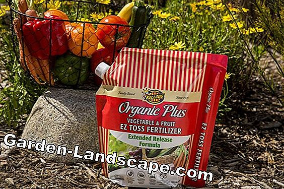 Garden fertilizer - natural fertilizer for the garden