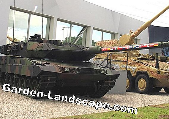Marder protection / Marder defense for house and car
