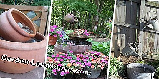 Build a balcony pond from an old wooden barrel - how it works!