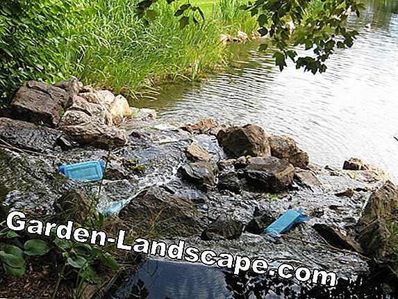 Turbid pond water - clarify pond properly