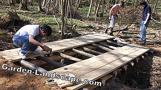 Build a bridge on the pond made of wood