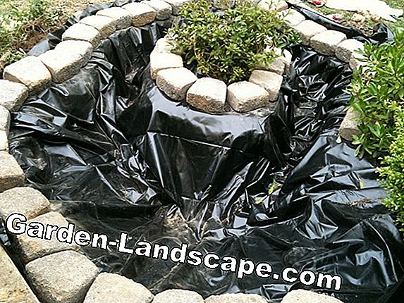 How to lay pond liner in the garden pond - instructions