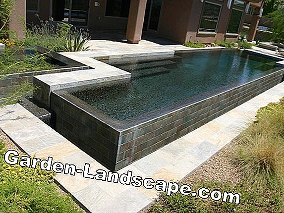 Pool with style - stainless steel, concrete or plastic?