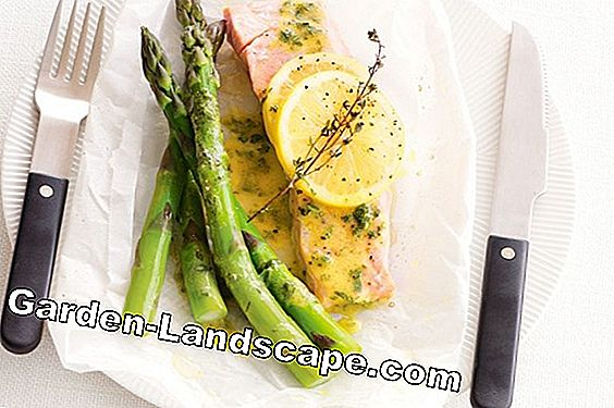 Asparagus time: The white bars are late