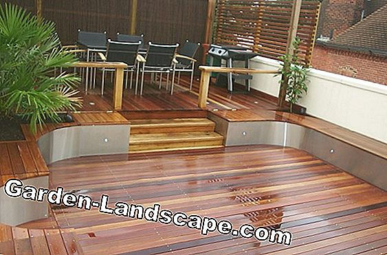 Decking: Modern wood protection