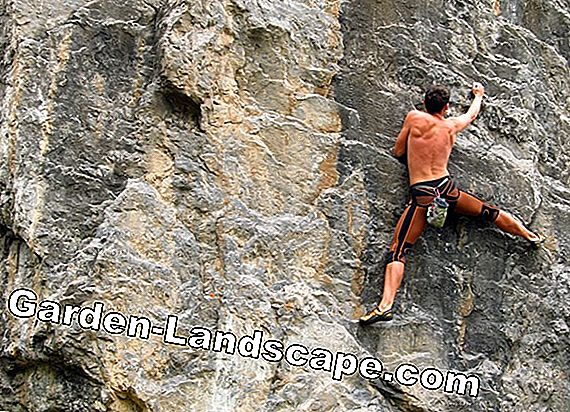 Different types of climbing at a glance