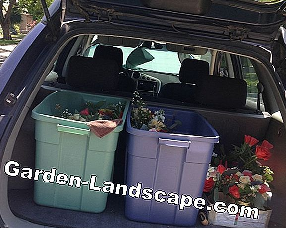 Flower boxes with water storage