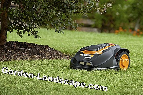 Mower Robots: The right care and maintenance
