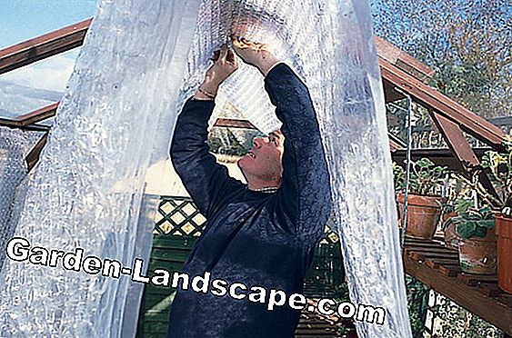How to insulate your greenhouse