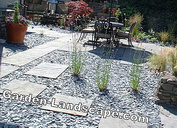 Garden design with gravel and grit