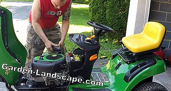 Lawn mower: maintenance before the winter break