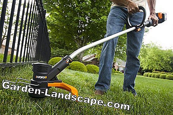 The best grass trimmer with battery