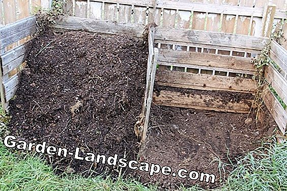From the grass clippings to the perfect compost