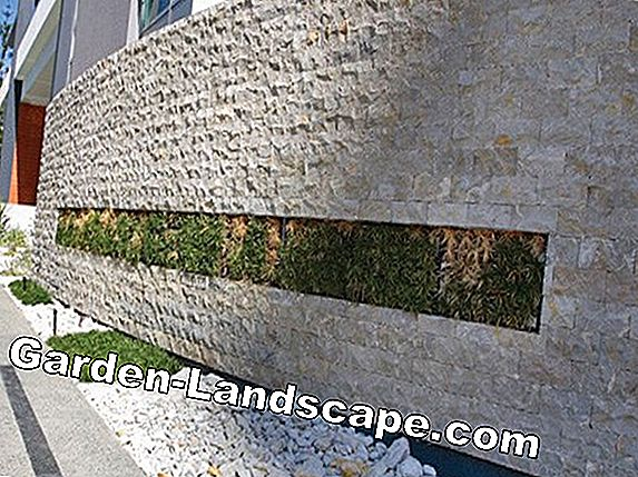 Lawn edge - steel, concrete or granite?