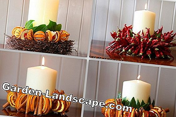 Christmas decoration ideas with cones
