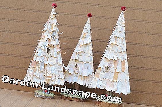 Christmas decoration with birch bark