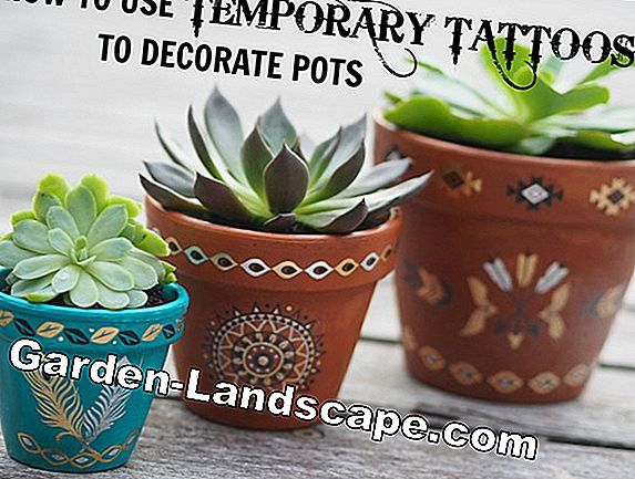 Creative idea: paint and decorate a clay pot