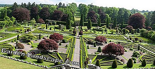 Discover gardens in France and Ireland