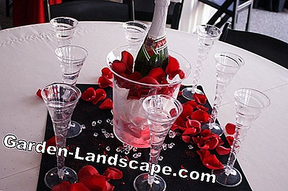 Ice decoration with rose petals