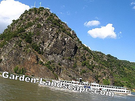 The Rhine in the valley of the Loreley