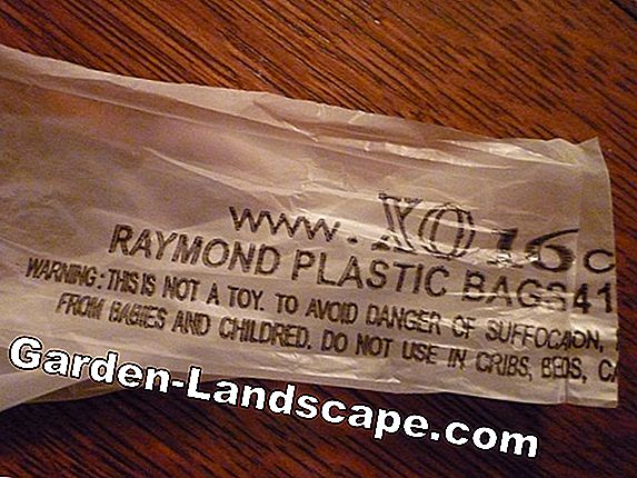 Garbage bags made of compostable plastic: Worse than their reputation
