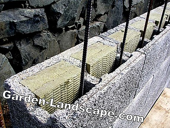 Basement wall bricks for formwork - dimensions and qualities in comparison