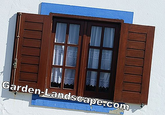 Refurbish box windows, seal, improve U-value