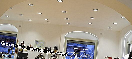 Ceiling light - for living area and office