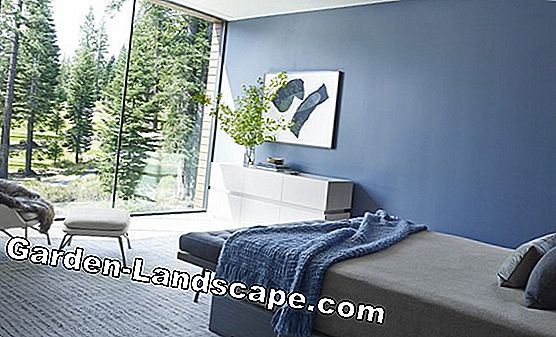 Color design in bedrooms - color choice, colors, interior design