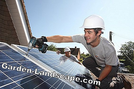 Cost Photovoltaic & Solar Energy