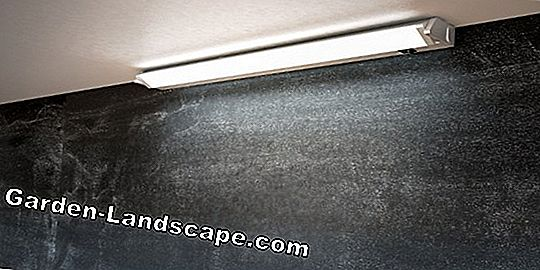 Install damp room lamps