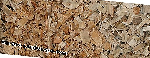 Drying of chips - woodchips