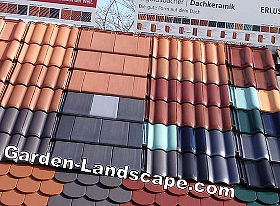 Erlus roof tiles