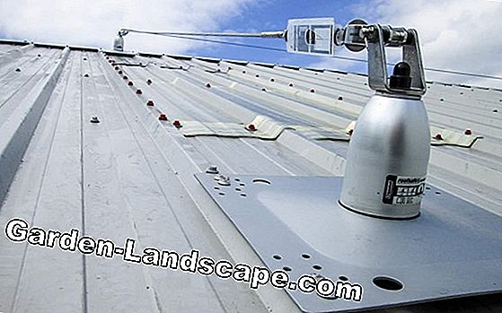 Fall protection for roofs and flat roofs