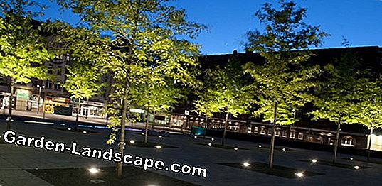 In-ground luminaires - ideas and solutions